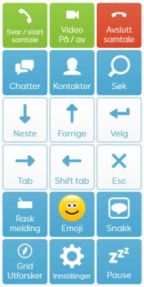 kontrollpanel skype for grid